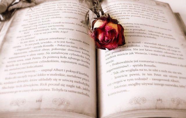 Livros e leituras: Caminhada em matrimónio