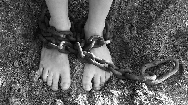 O tesouro da liberdade e o seguimento de Jesus