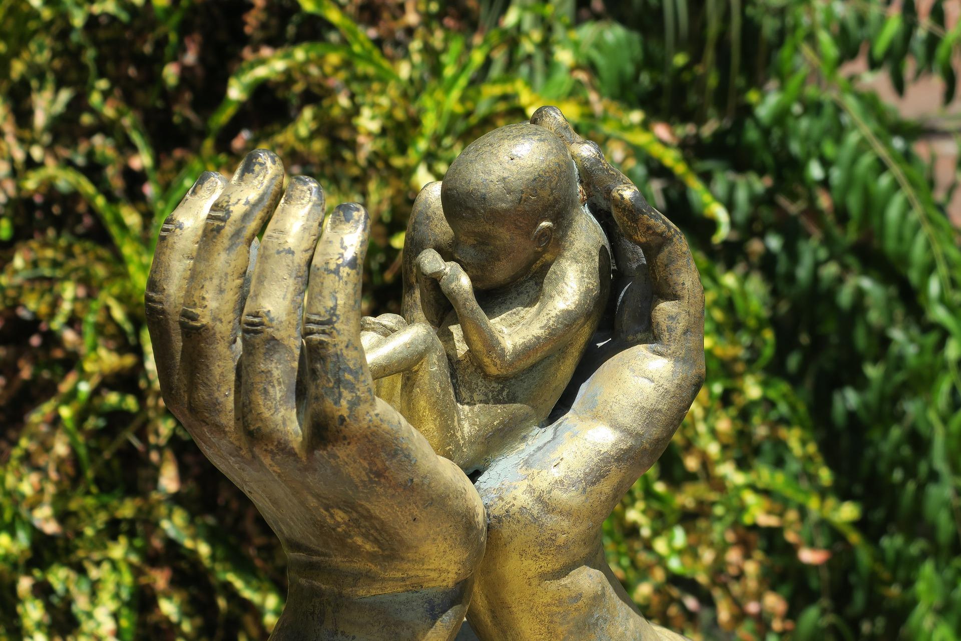 abortion-3533963_1920