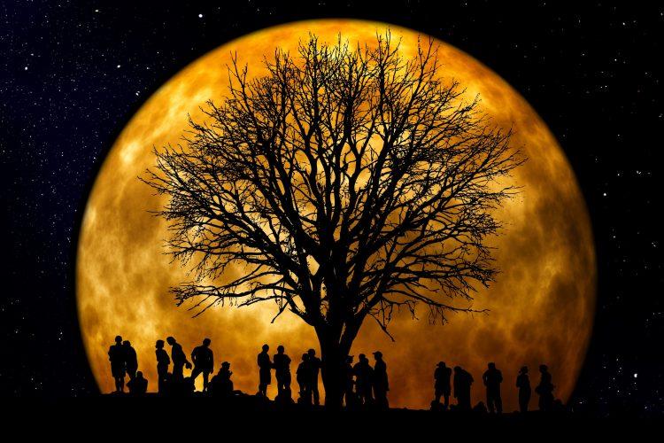 community-dark-full-moon-22138-750x500